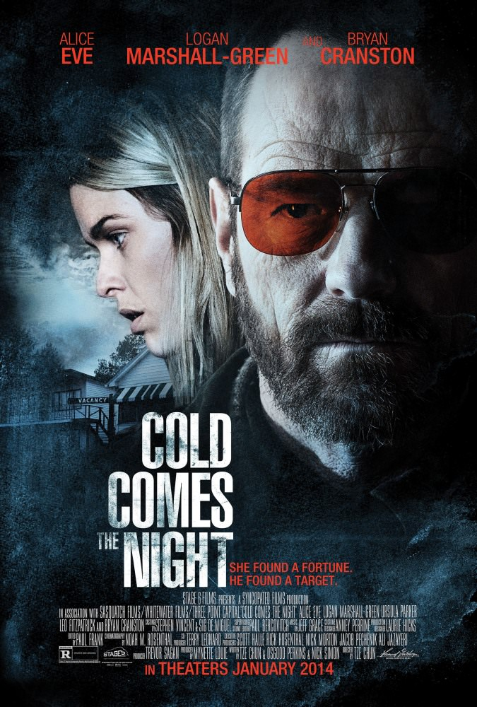 Погляд зими | Cold Comes the Night (2013)